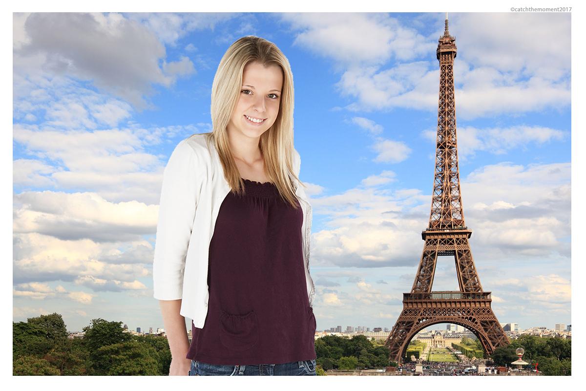 Eiffel Tower skyline